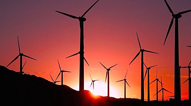 Where the wind blows: Building a cleaner future with wind energy