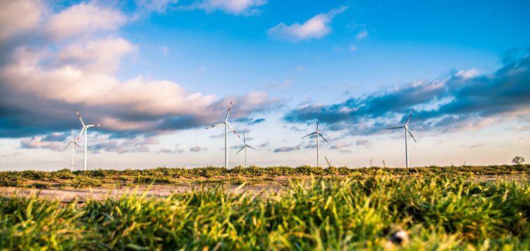 تونس: فرص جديدة لمستثمري طاقة الرياح