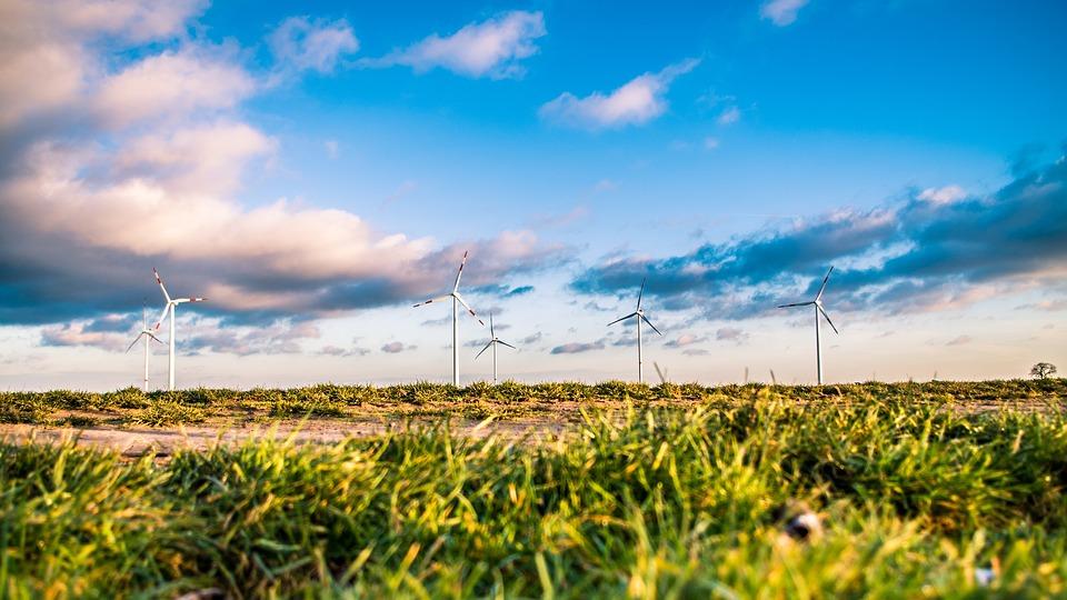 Túnez: nuevas oportunidades para los inversores en energía eólica