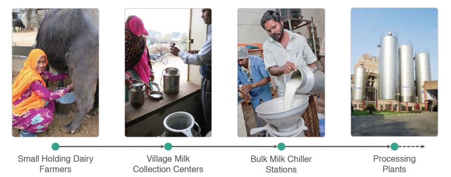 Milk Supply Chain in India