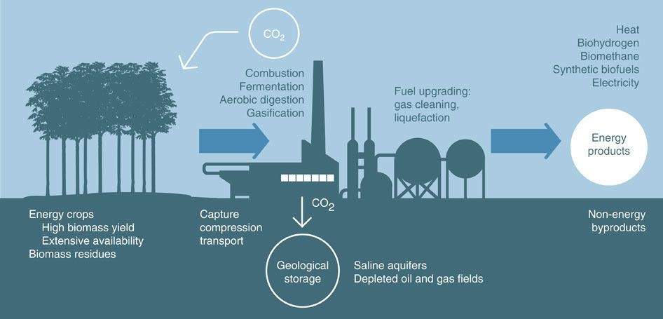 Title: BECCS: Generating bioenergy from carbon capture  Source: Nature Climate Change journal, volume 5,  2015