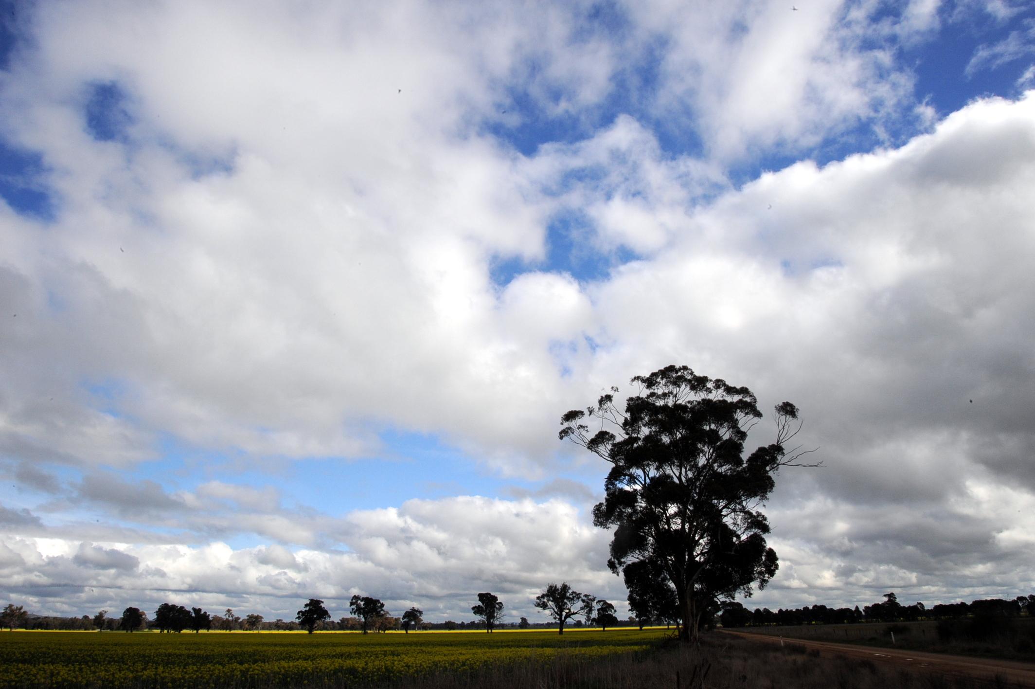 عبداللطيف جميل للطاقة تؤمّن تمويلاً لحقل وينتون للطاقة الشمسية في فيكتوريا الأسترالية