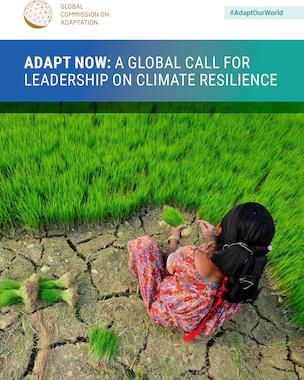 Global Commission on Adaptation