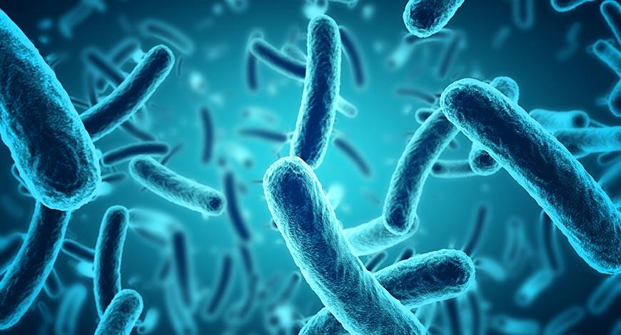 مكافحة مقاومة مضادات الميكروبات