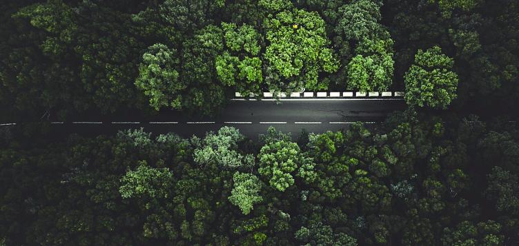طاقة الشحن: كيف تقود البطاريات ثورة التنقل الكهربائي