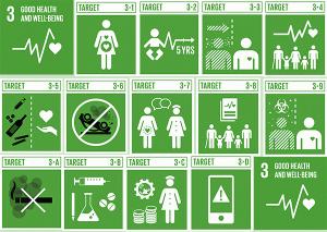 Sustainable Development Goal Targets