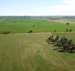 FRV obtient un financement écologique pour le site de Sebastopol en Australie