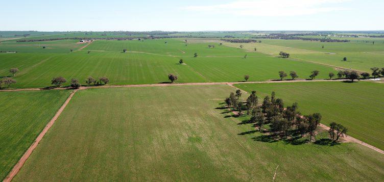 Abdul Latif Jameel Energy cierra un acuerdo de 'Green Finance' para la séptima planta solar en Australia