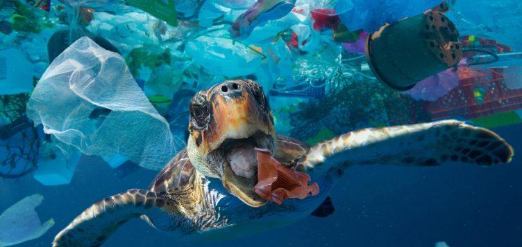 Encontrar una solución para la contaminación de plástico