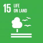 UN SDG 15
