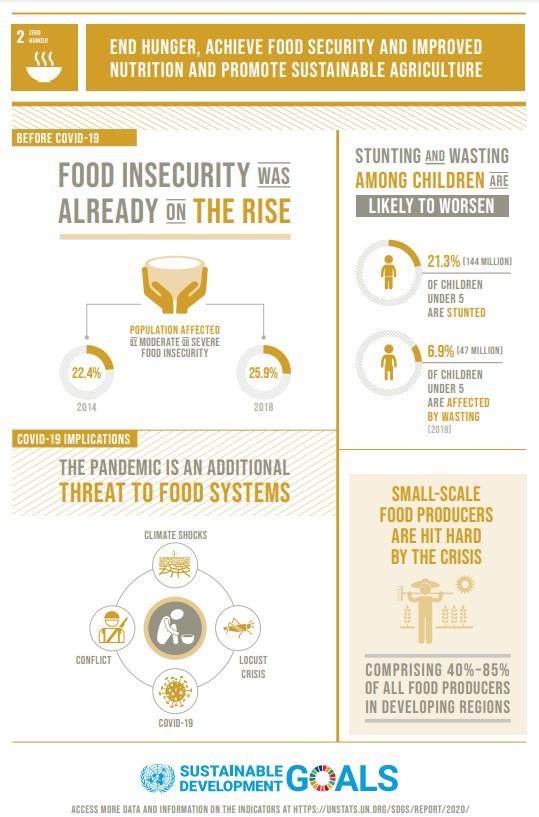 UN SDG 2 infographic